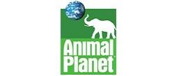 Köp Animal Planet leksaker online